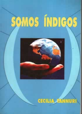 Livro Somos Índigos Vol.1